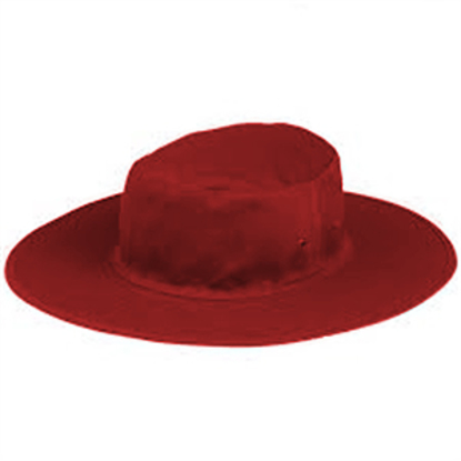 Image de Red Sun Hat