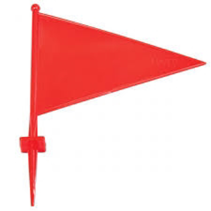 Picture of Boundary Flag Red