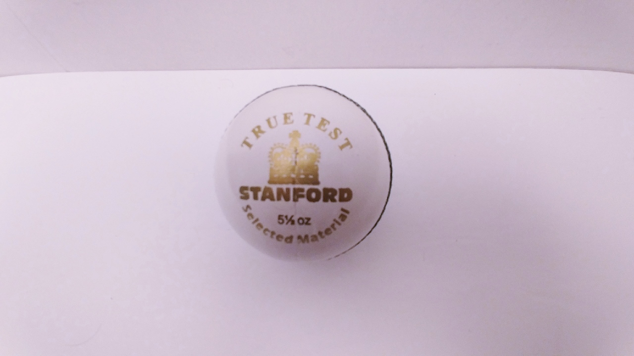 Picture of SF Cricket Ball True Test White
