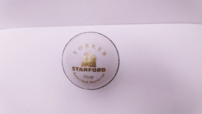 Picture of SF Cricket Ball Yorker White