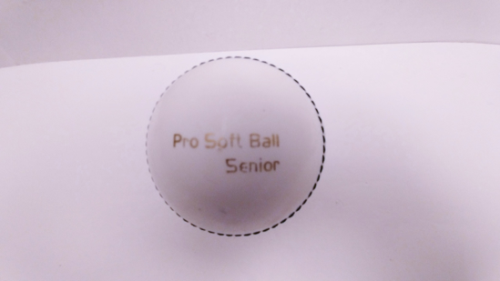 Picture of Incredi Cricket Ball White