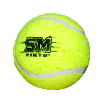 Image de SM Heavy Tennis Ball Lime Color