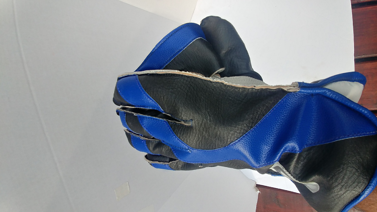Picture of SM Wicket Keeping Gloves PLAYER