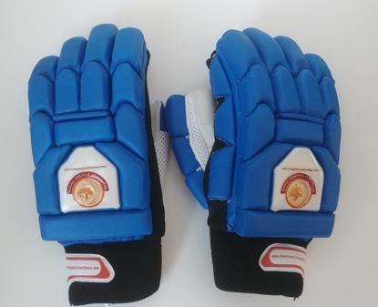 Image de WKT Batting Gloves Triumph Royal Blue - RH Only